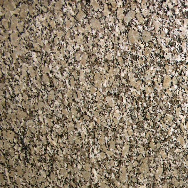 Autumn Beige Granite  Kitchen and Bathroom Countertops by TC Discount Granite